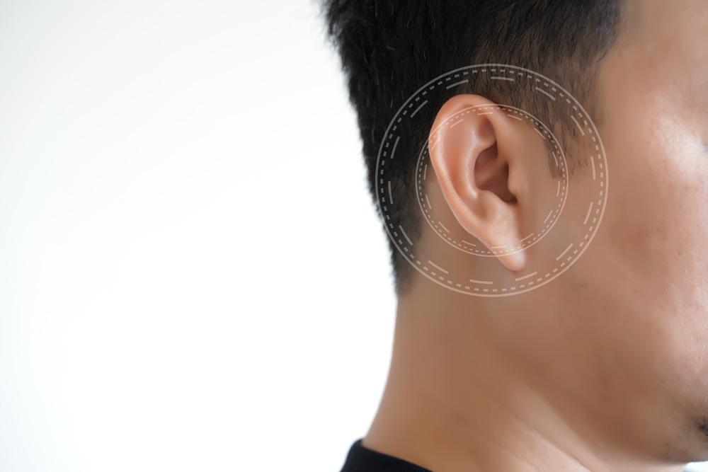 types-of-hearing-loss-active-hearing-health.jpg